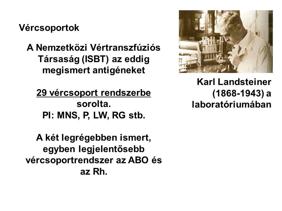 Vércsoportok Karl Landsteiner (1868-1943) a laboratóriumában A Nemzetközi Vértranszfúziós Társaság (ISBT) az eddig megismert antigéneket 29 vércsoport