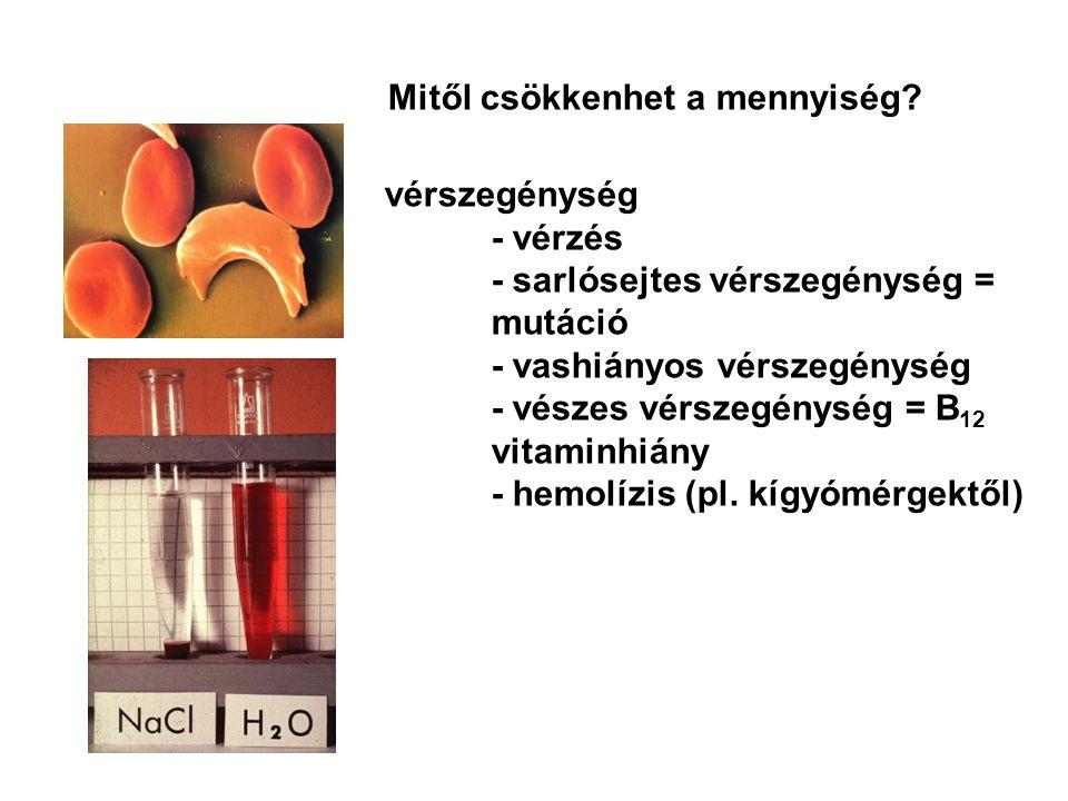 vérszegénység - vérzés - sarlósejtes vérszegénység = mutáció - vashiányos vérszegénység - vészes vérszegénység = B 12 vitaminhiány - hemolízis (pl. kí