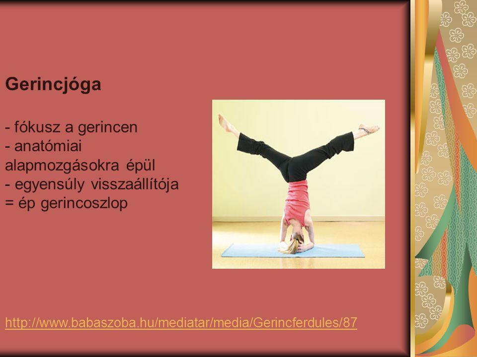 http://www.babaszoba.hu/mediatar/media/Gerincferdules/87 Gerincjóga - fókusz a gerincen - anatómiai alapmozgásokra épül - egyensúly visszaállítója = ép gerincoszlop