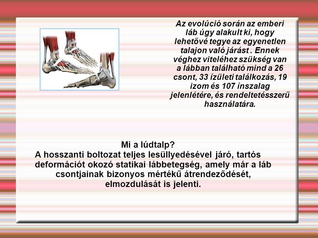 Az evolúció során az emberi láb úgy alakult ki, hogy lehetővé tegye az egyenetlen talajon való járást. Ennek véghez viteléhez szükség van a lábban tal