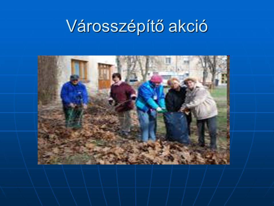 A városi szabadidőpark kialakítása A város intézményeinek önkéntes csoportjai fát ültetnek a városban, hogy Martfűn élhetőbb zöld övezet legyen.