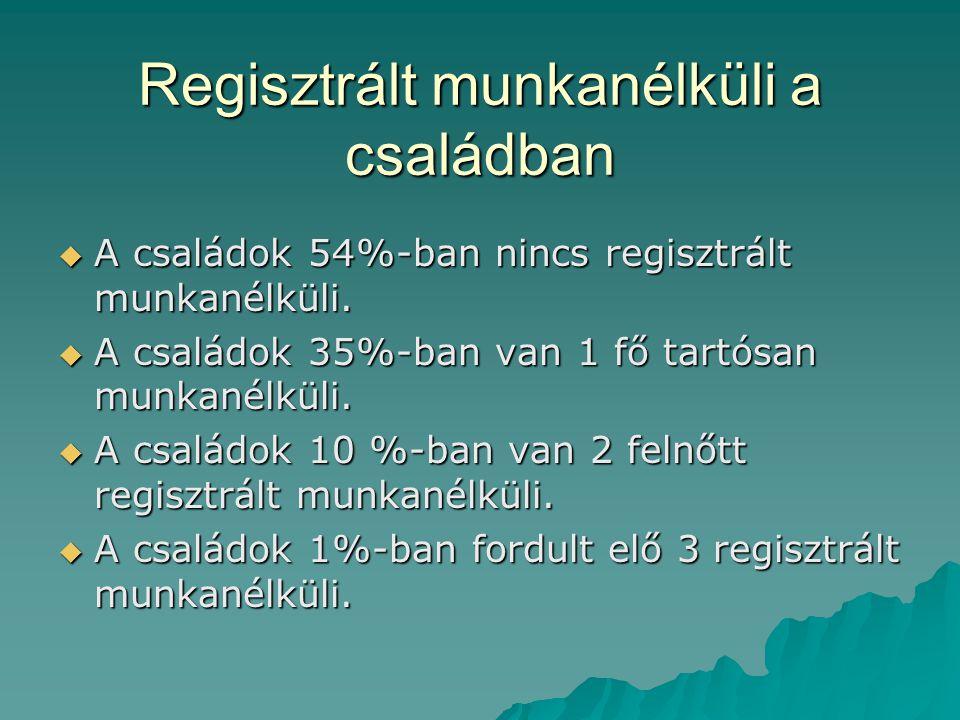 Regisztrált munkanélküli a családban  A családok 54%-ban nincs regisztrált munkanélküli.