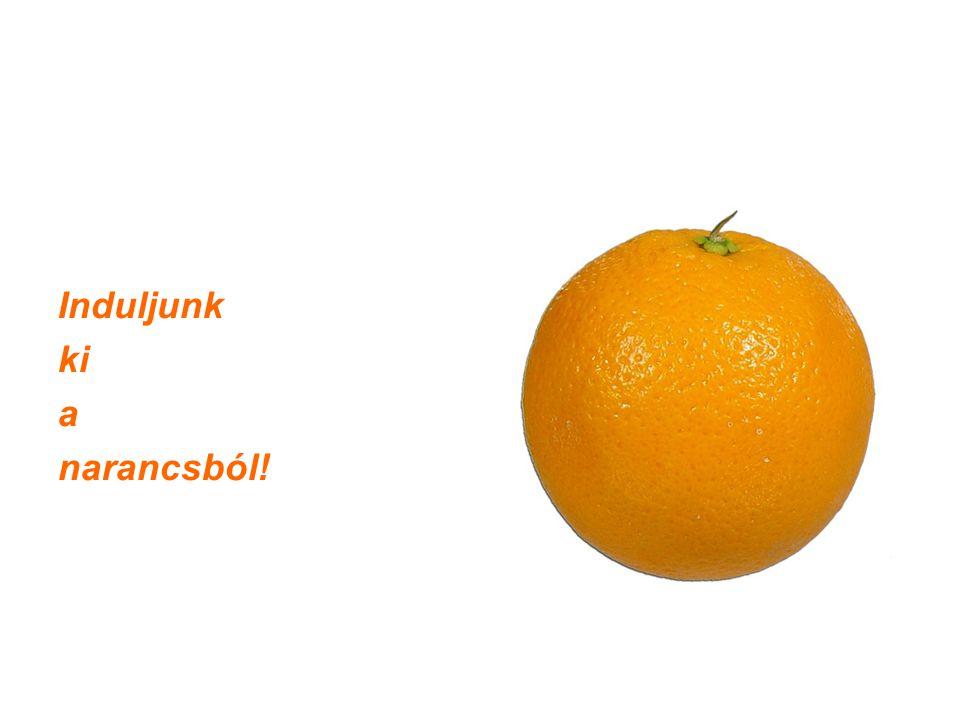 magyar narancs:...amikor a narancs már nemcsak narancs...