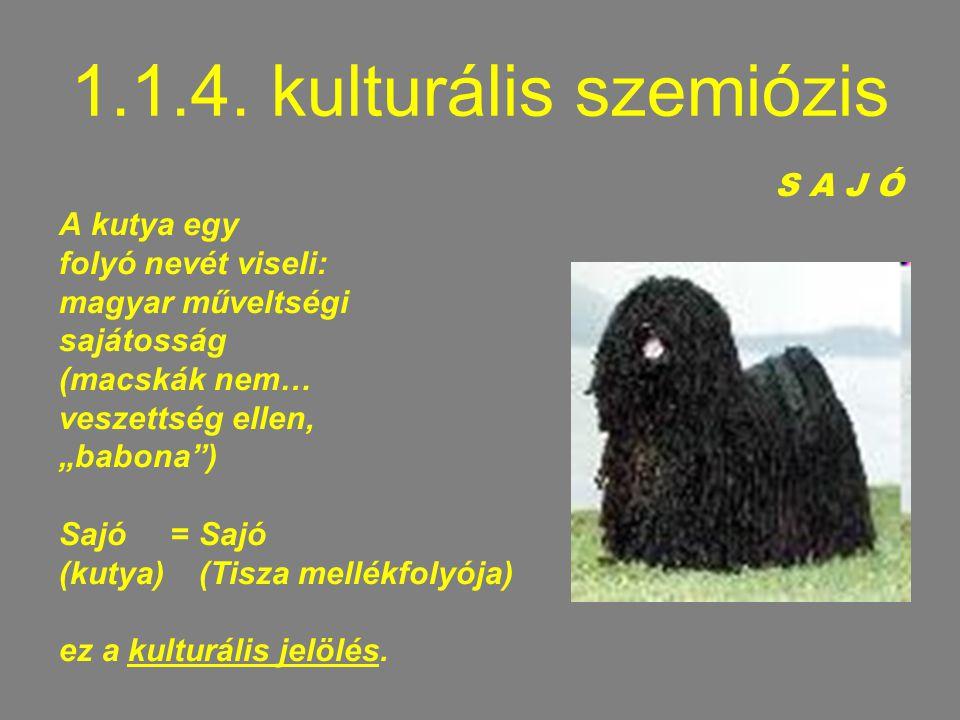 """1.1.4. kulturális szemiózis S A J Ó A kutya egy folyó nevét viseli: magyar műveltségi sajátosság (macskák nem… veszettség ellen, """"babona"""") Sajó = Sajó"""