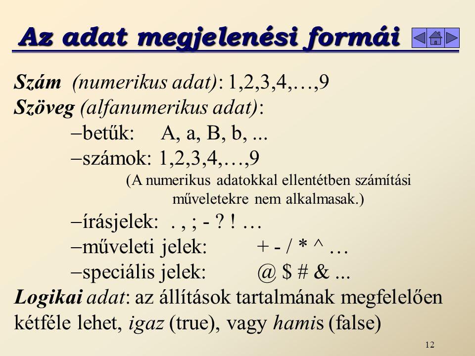 12 Az adat megjelenési formái Szám (numerikus adat): 1,2,3,4,…,9 Szöveg (alfanumerikus adat):  betűk: A, a, B, b,...  számok: 1,2,3,4,…,9 (A numerik