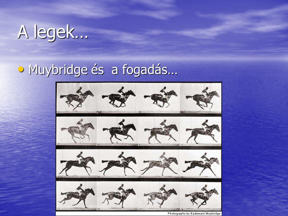 A legek… Muybridge és a fogadás… Muybridge és a fogadás…