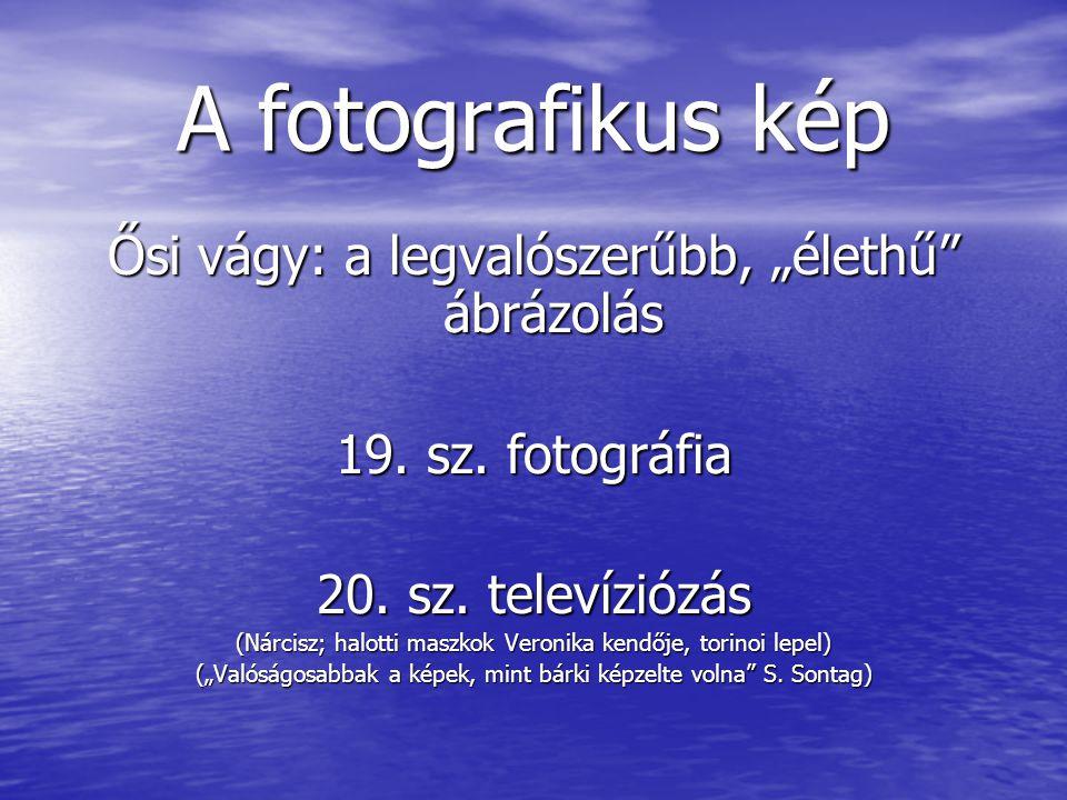 """A fotografikus kép Ősi vágy: a legvalószerűbb, """"élethű ábrázolás 19."""