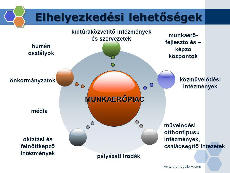www.themegallery.com Továbbtanulási lehetőségek MUNKAERŐPIAC PhD (doktori program) MASTER (andragógia humán erőforrás, kulturális mediátor, stb.) andragógia szak BA érettségi