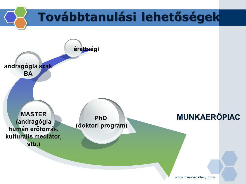 www.themegallery.com Továbbtanulási lehetőségek MUNKAERŐPIAC PhD (doktori program) MASTER (andragógia humán erőforrás, kulturális mediátor, stb.) andr