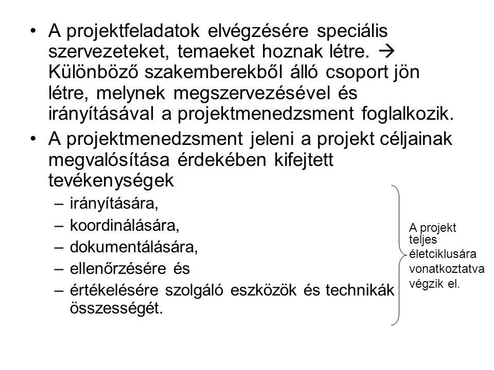 A projektfeladatok elvégzésére speciális szervezeteket, temaeket hoznak létre.  Különböző szakemberekből álló csoport jön létre, melynek megszervezés