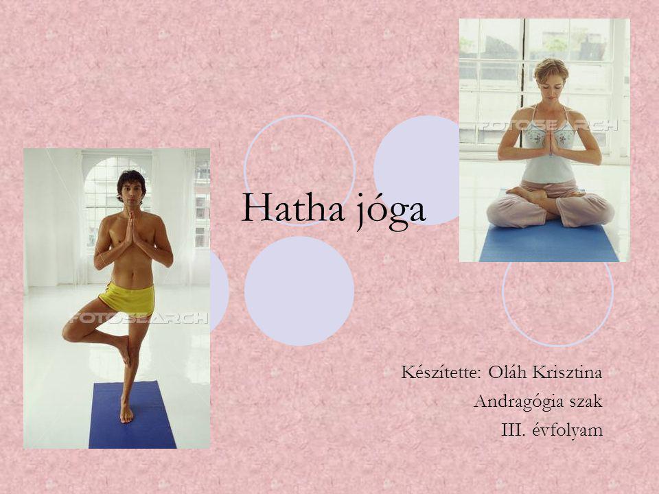 A jóga eredete Ő si bölcsek ébredtek rá meditációjuk során Gyökerek: ő si India területe, i.e.