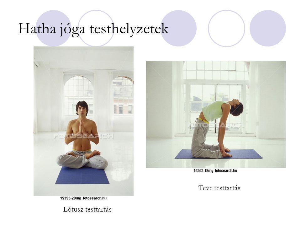 Hatha jóga testhelyzetek Lótusz testtartás Teve testtartás