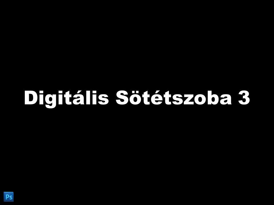 Digitális Sötétszoba Adobe Photoshop CS5 Extended v12.0 Fotószakkör 2011/1. Digitális Sötétszoba 3 A digitális fotó utómunkája.