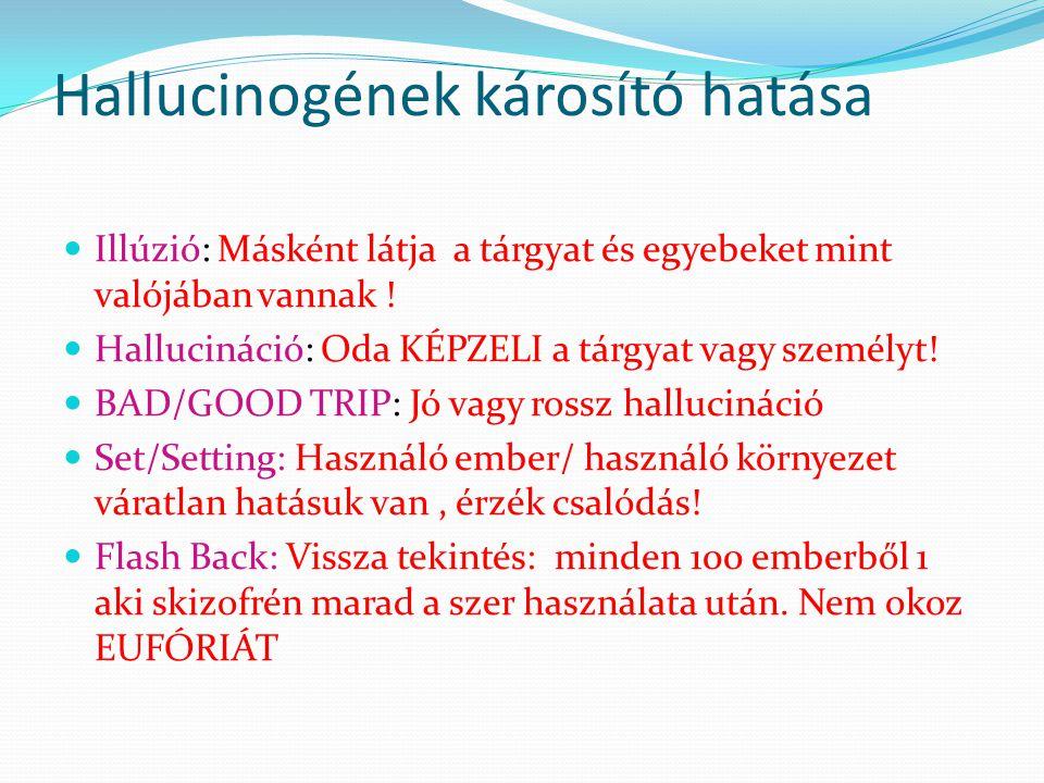 HALLUCINOGÉNEK -LSD(bélyeg) - Gomba( mescacin, pszichobicin ) - Ketamin -Angyalpor - Látnok zsálya - Trombita virág Csattanó maszlag Üröm( becénedek)