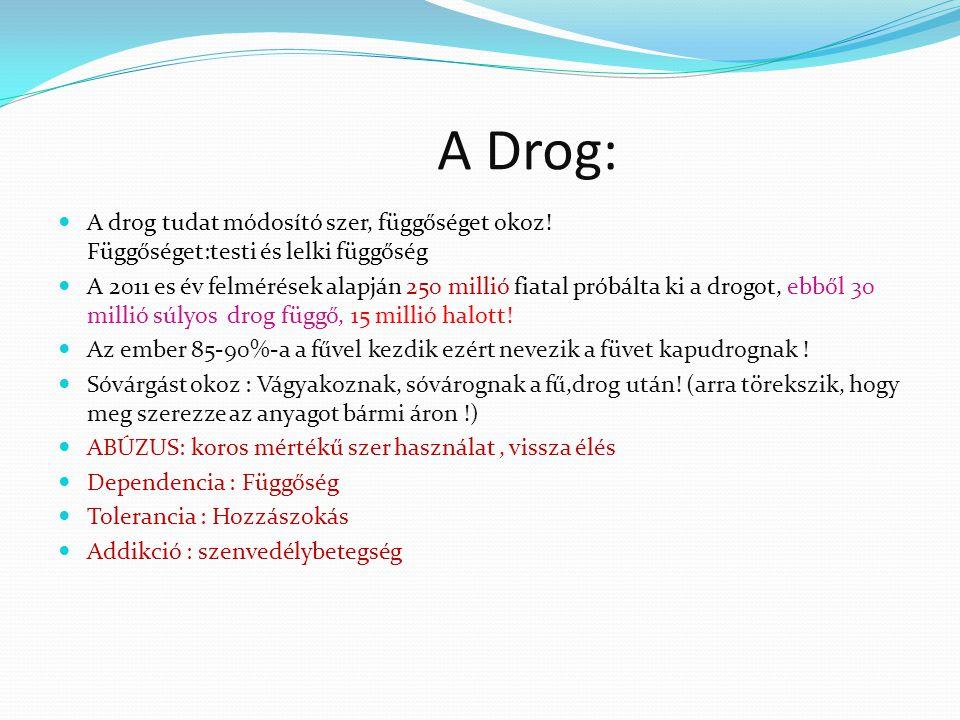 A Drog: A drog tudat módosító szer, függőséget okoz.