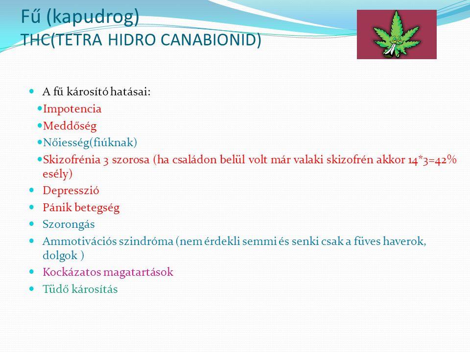 A drogoknak 4. nagy csoportja van: THC(fű) Stimulánsok(DISCO-DROG) Hallucinogének Opioidok/ Opiátok (mák)