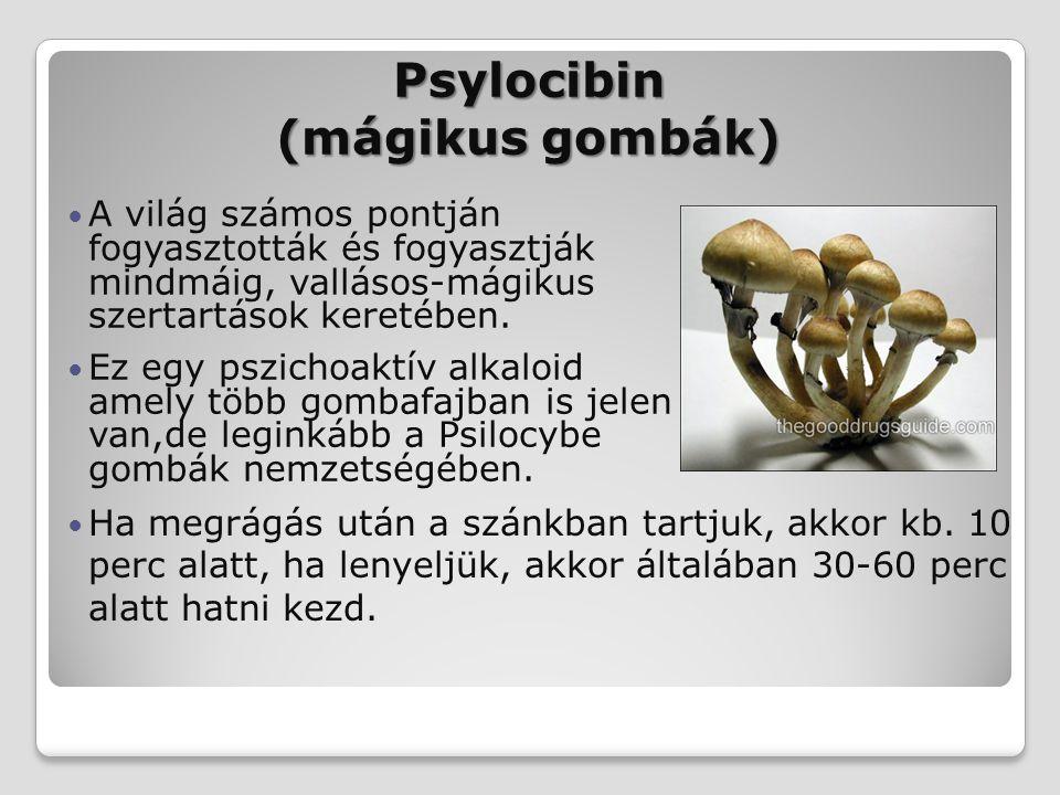 Psylocibin (mágikus gombák) Ha megrágás után a szánkban tartjuk, akkor kb. 10 perc alatt, ha lenyeljük, akkor általában 30-60 perc alatt hatni kezd. A
