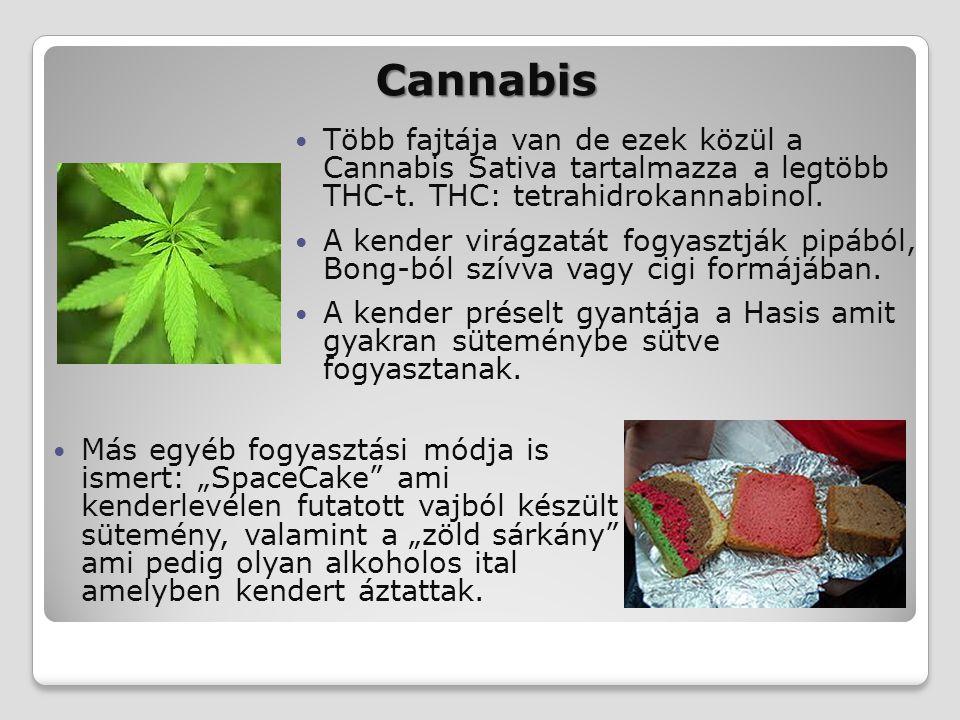Cannabis Több fajtája van de ezek közül a Cannabis Sativa tartalmazza a legtöbb THC-t. THC: tetrahidrokannabinol. A kender virágzatát fogyasztják pipá