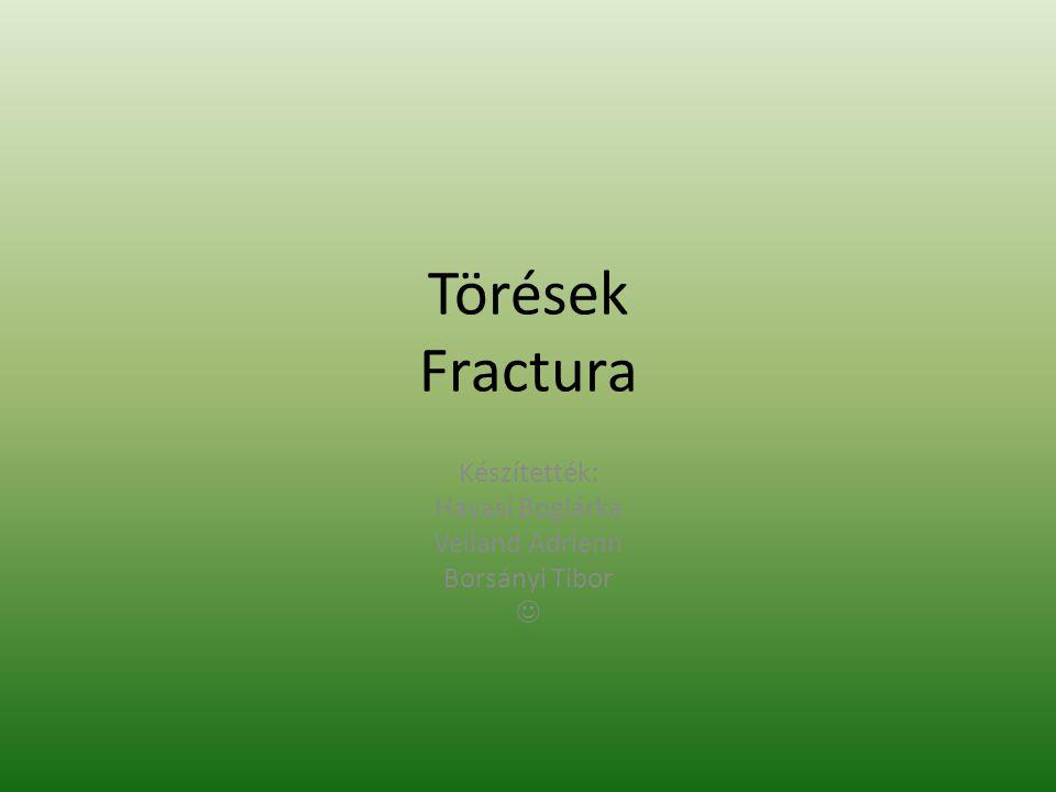 Törések Fractura Készítették: Havasi Boglárka Veiland Adrienn Borsányi Tibor