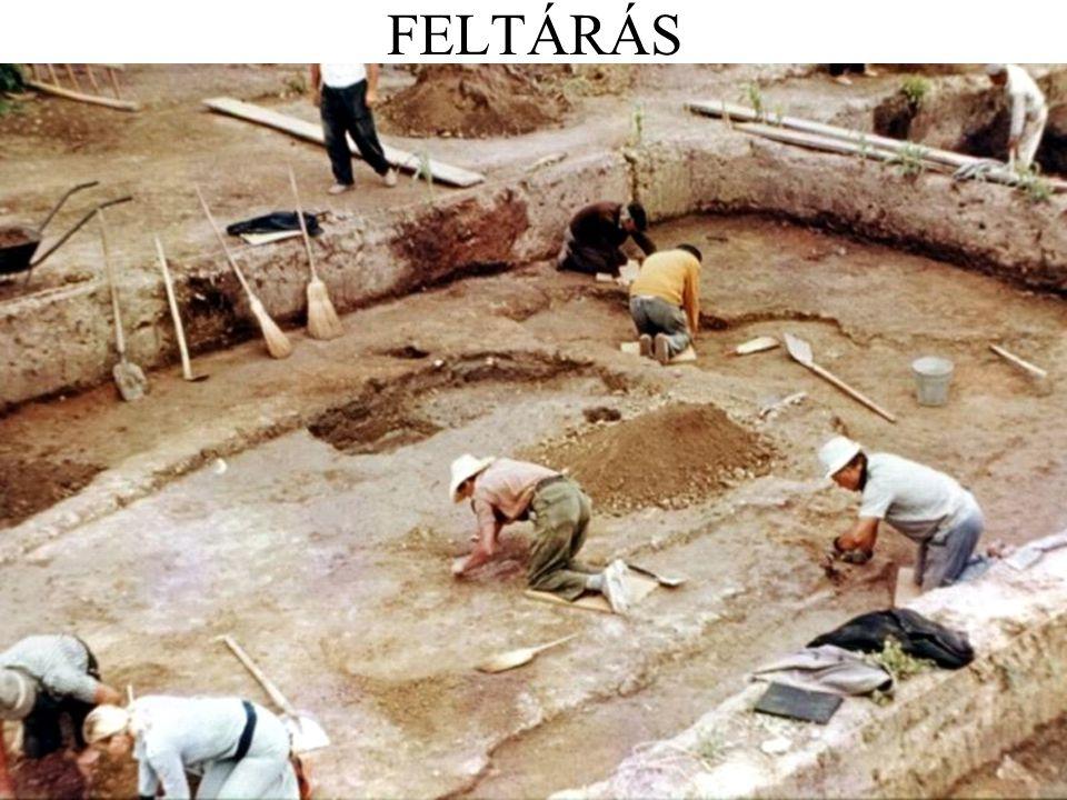 FELTÁRÁS