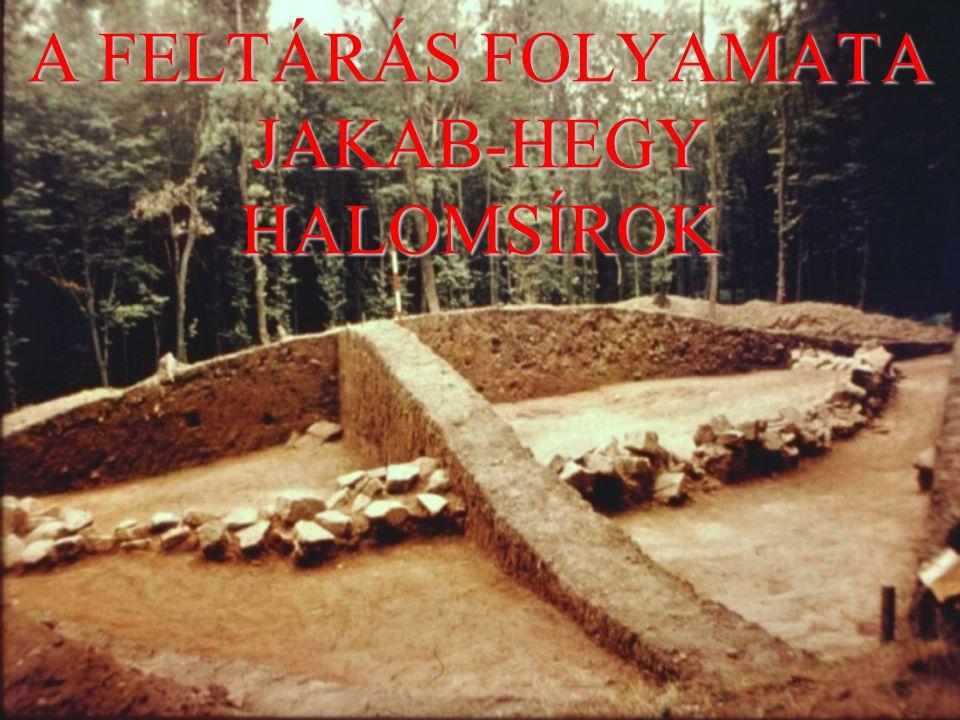 A FELTÁRÁS FOLYAMATA JAKAB-HEGY HALOMSÍROK