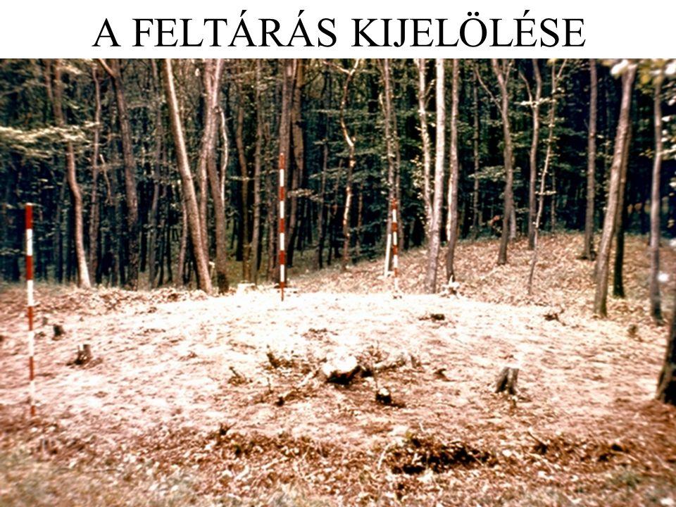 A FELTÁRÁS KIJELÖLÉSE