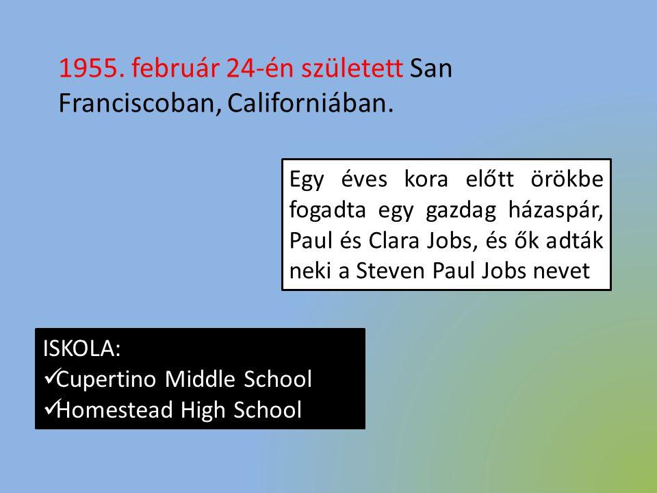 1955. február 24-én született San Franciscoban, Californiában. Egy éves kora előtt örökbe fogadta egy gazdag házaspár, Paul és Clara Jobs, és ők adták