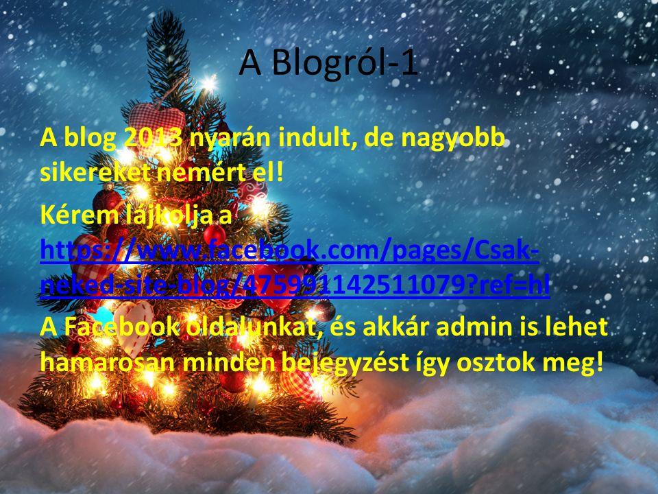 A Blogról-1 A blog 2013 nyarán indult, de nagyobb sikereket nemért el.