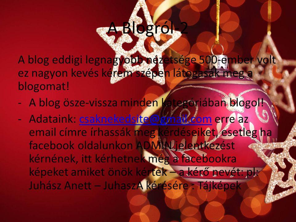 A Blogról-2 A blog eddigi legnagyobb nézetsége 500-ember volt ez nagyon kevés kérem szépen látogasák meg a blogomat.