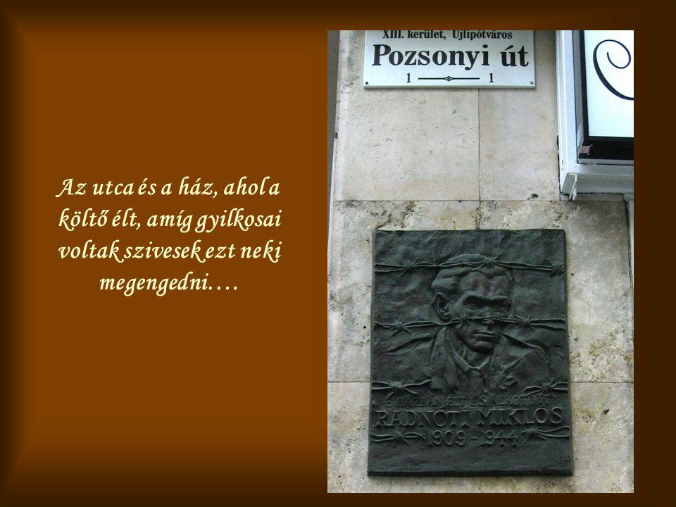 Az utca és a ház, ahol a költő élt, amíg gyilkosai voltak szivesek ezt neki megengedni….