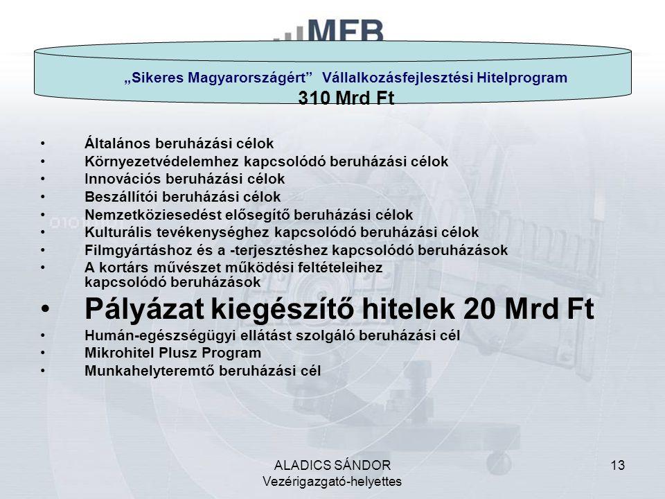 """ALADICS SÁNDOR Vezérigazgató-helyettes 13 """"Sikeres Magyarországért Vállalkozásfejlesztési Hitelprogram 310 Mrd Ft Általános beruházási célok Környezetvédelemhez kapcsolódó beruházási célok Innovációs beruházási célok Beszállítói beruházási célok Nemzetköziesedést elősegítő beruházási célok Kulturális tevékenységhez kapcsolódó beruházási célok Filmgyártáshoz és a -terjesztéshez kapcsolódó beruházások A kortárs művészet működési feltételeihez kapcsolódó beruházások Pályázat kiegészítő hitelek 20 Mrd Ft Humán-egészségügyi ellátást szolgáló beruházási cél Mikrohitel Plusz Program Munkahelyteremtő beruházási cél"""
