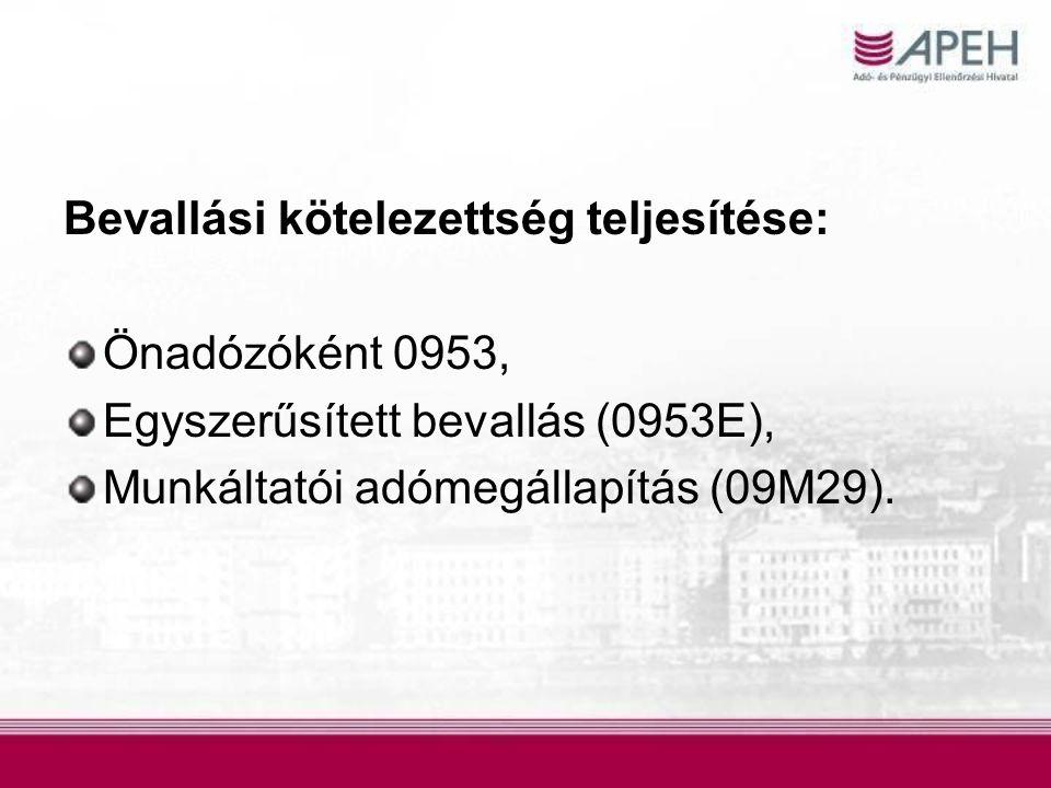 Bevallási kötelezettség teljesítése: Önadózóként 0953, Egyszerűsített bevallás (0953E), Munkáltatói adómegállapítás (09M29).