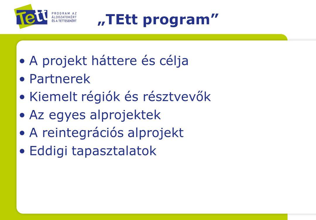 """""""TEtt program A projekt háttere és célja Partnerek Kiemelt régiók és résztvevők Az egyes alprojektek A reintegrációs alprojekt Eddigi tapasztalatok"""