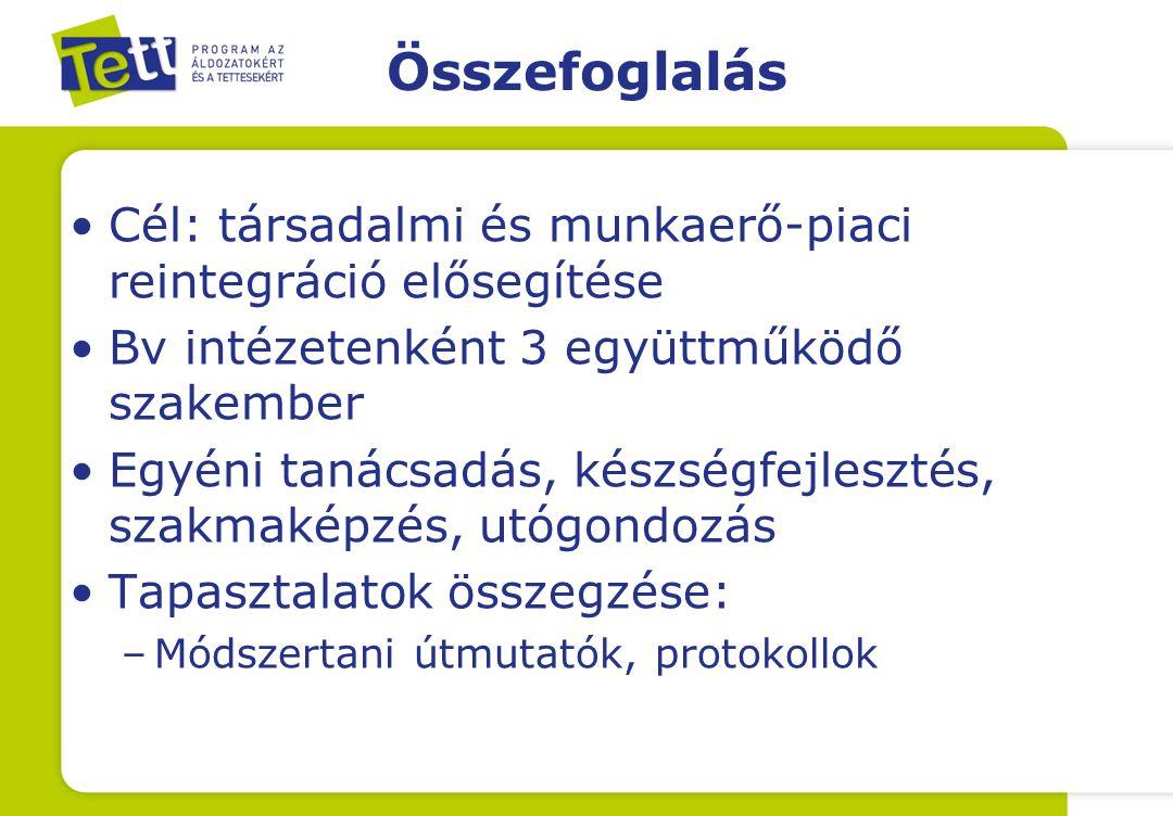 Összefoglalás Cél: társadalmi és munkaerő-piaci reintegráció elősegítése Bv intézetenként 3 együttműködő szakember Egyéni tanácsadás, készségfejlesztés, szakmaképzés, utógondozás Tapasztalatok összegzése: –Módszertani útmutatók, protokollok