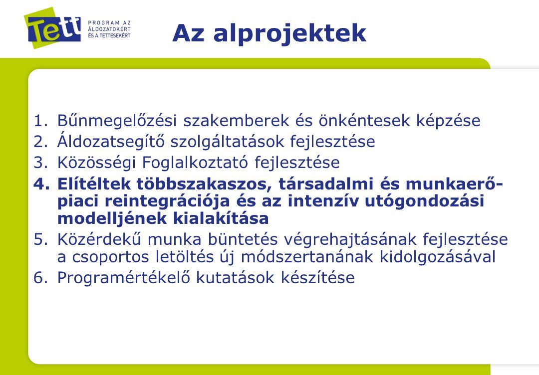 Bűnmegelőzési szakemberek és önkéntesek képzése Fenntarthatóság → e-learning tanegység kidolgozása Szakirányú továbbképzés: bűnmegelőzési koordinátor Felnőttképzési tanfolyamok: –A kiskorúak bűnözése elleni fellépés új útjai –Az áldozatpolitika új irányai Magyarországon –Bűnelkövetők reintegrációjának új lehetőségei