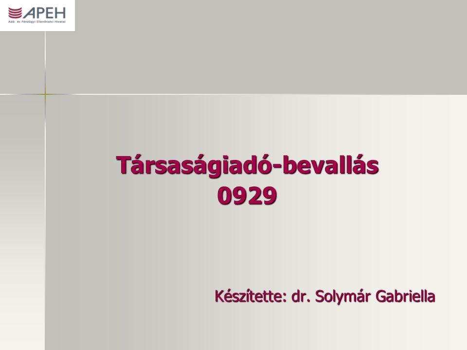 Társaságiadó-bevallás0929 Készítette: dr. Solymár Gabriella