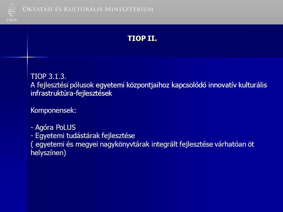 TIOP II. TIOP 3.1.3.