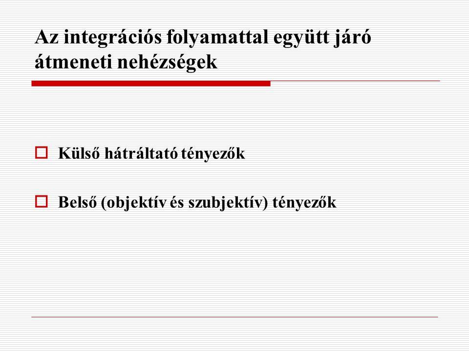 Az integrációs folyamattal együtt járó átmeneti nehézségek  Külső hátráltató tényezők  Belső (objektív és szubjektív) tényezők