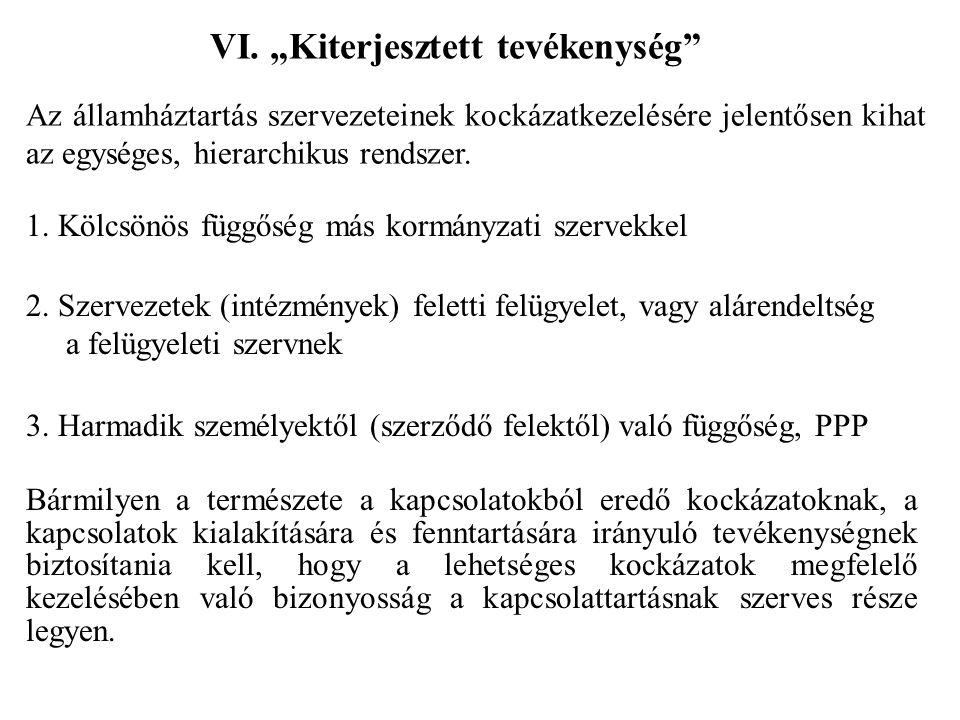 """VI. """"Kiterjesztett tevékenység"""" 1. Kölcsönös függőség más kormányzati szervekkel 2. Szervezetek (intézmények) feletti felügyelet, vagy alárendeltség a"""