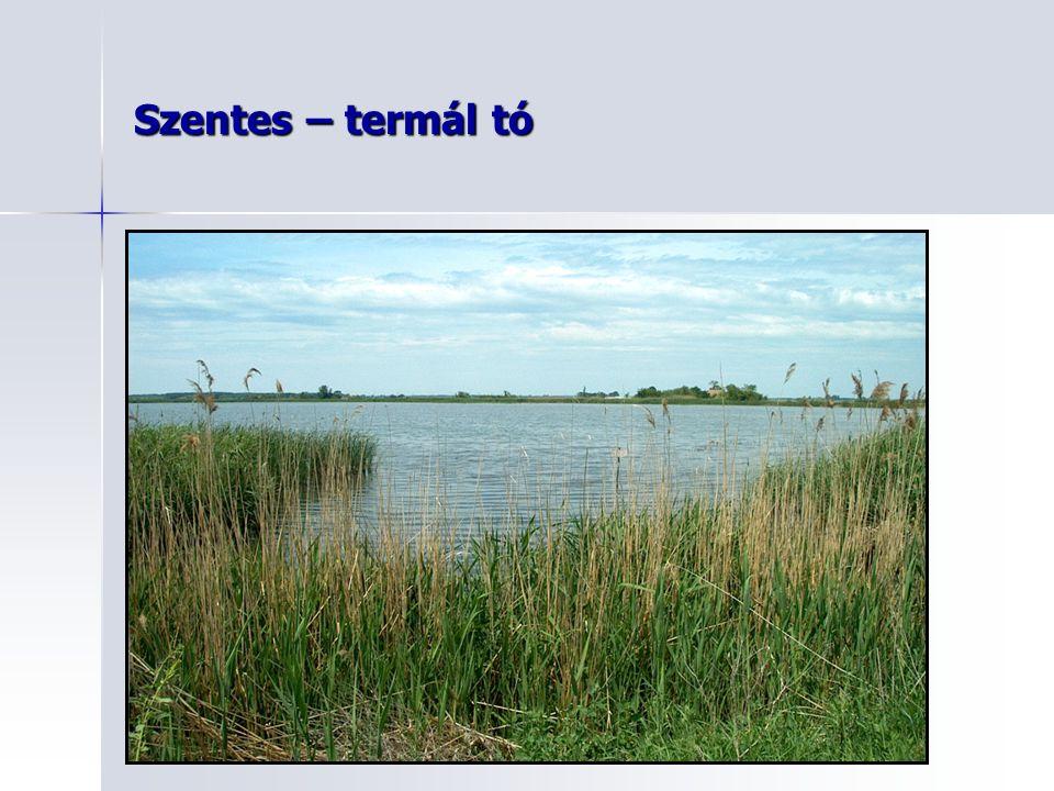 Szentes – termál tó