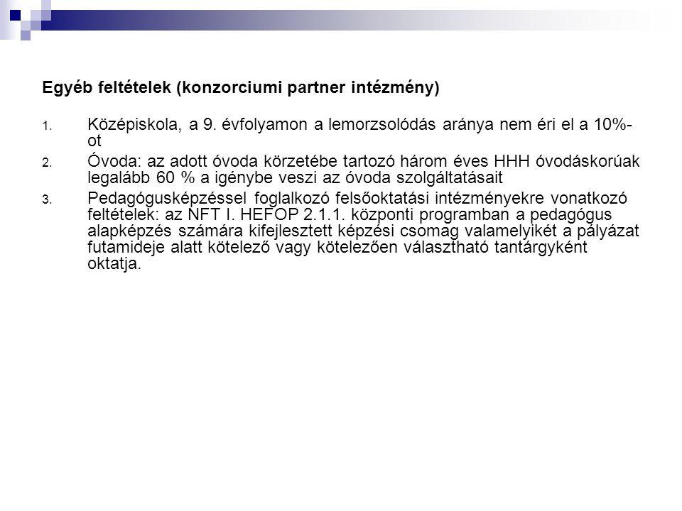 Egyéb feltételek (konzorciumi partner intézmény) 1.
