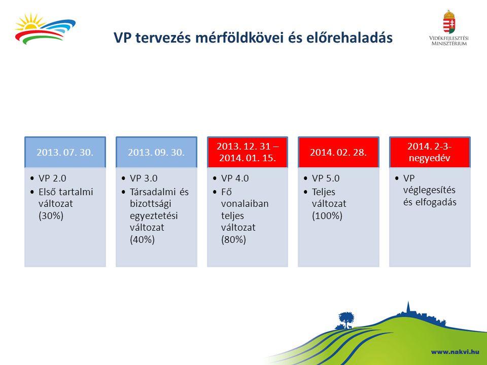 VP tervezés mérföldkövei és előrehaladás 2013. 07. 30. VP 2.0 Első tartalmi változat (30%) 2013. 09. 30. VP 3.0 Társadalmi és bizottsági egyeztetési v