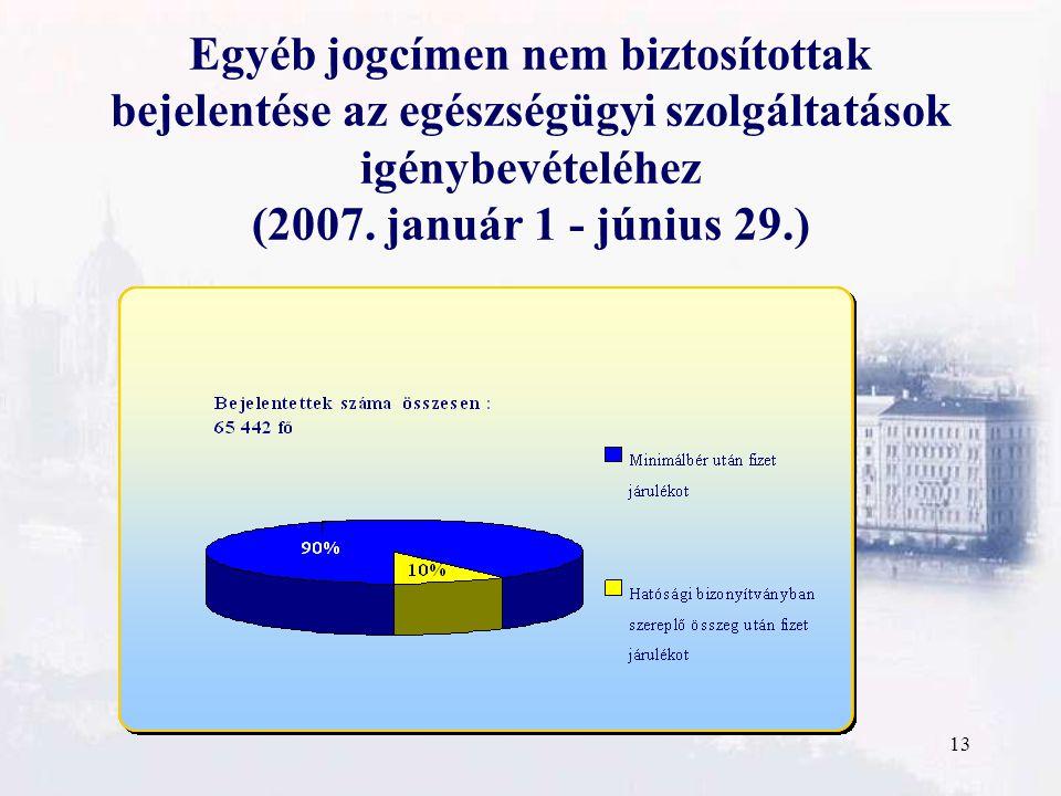 13 Egyéb jogcímen nem biztosítottak bejelentése az egészségügyi szolgáltatások igénybevételéhez (2007.