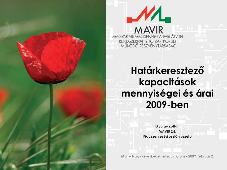 Határkeresztező kapacitások mennyiségei és árai 2009-ben Gyulay Zoltán MAVIR Zrt.