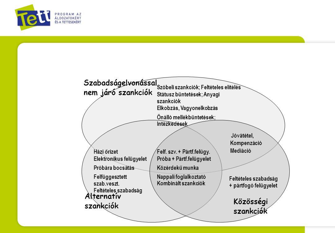 Elvárások: Személyre szabott, individualizált szankciók: bűnismétlési kockázatok kezelése, reintegráció elősegítése –Új esetkezelési technikák, kezelési programok –Reintegrációs szolgáltatások A sértettek, a megsértett közösség szükségleteinek érvényesítése- helyreállító igazságszolgáltatási szempontok  - helyreállító igazságszolgáltatási eszközök Külön magatartási szabályok Végrehajtás: a társadalom új típusú részvétele