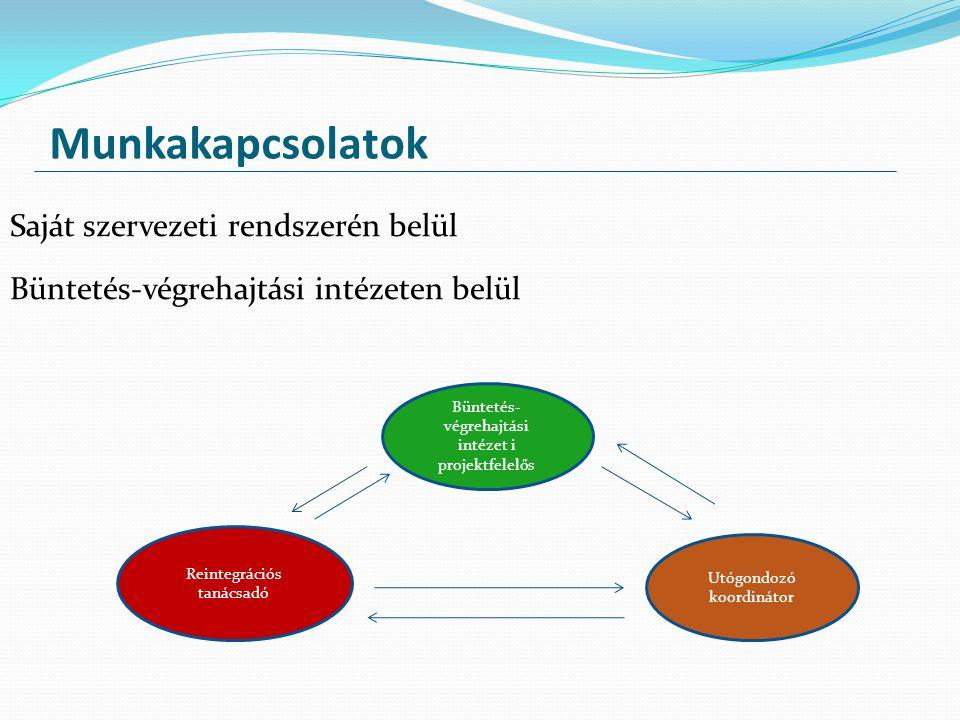 Munkakapcsolatok Saját szervezeti rendszerén belül Büntetés-végrehajtási intézeten belül Reintegrációs tanácsadó Büntetés- végrehajtási intézet i proj