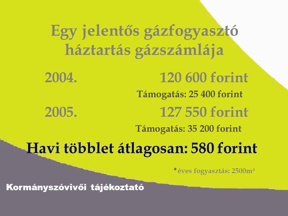 Kormányszóvivői tájékoztató Állami támogatás a háztartási gázszámlákhoz 100 11 18 + 2004.