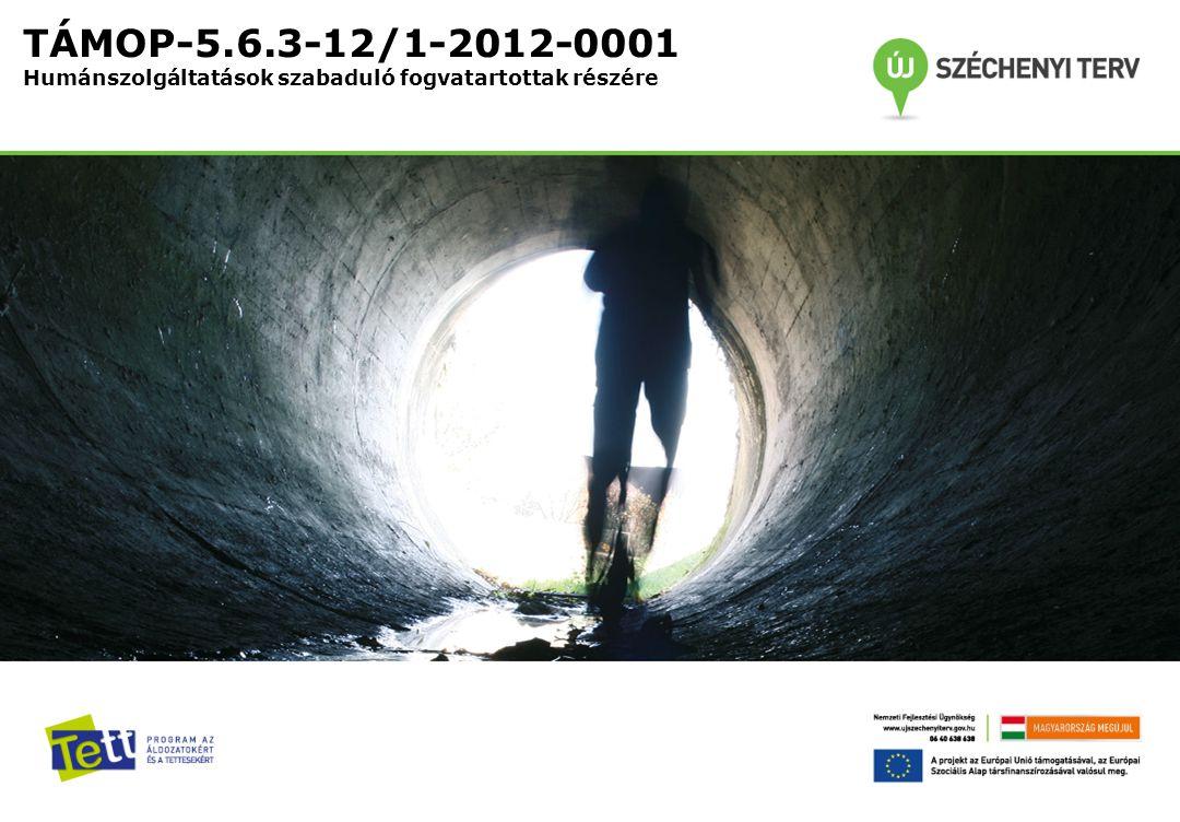 TÁMOP-5.6.3-12/1-2012-0001 Humánszolgáltatások szabaduló fogvatartottak részére