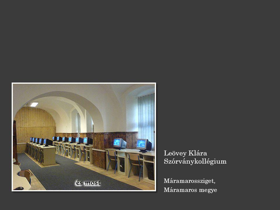 Leövey Klára Szórványkollégium Máramarossziget, Máramaros megye
