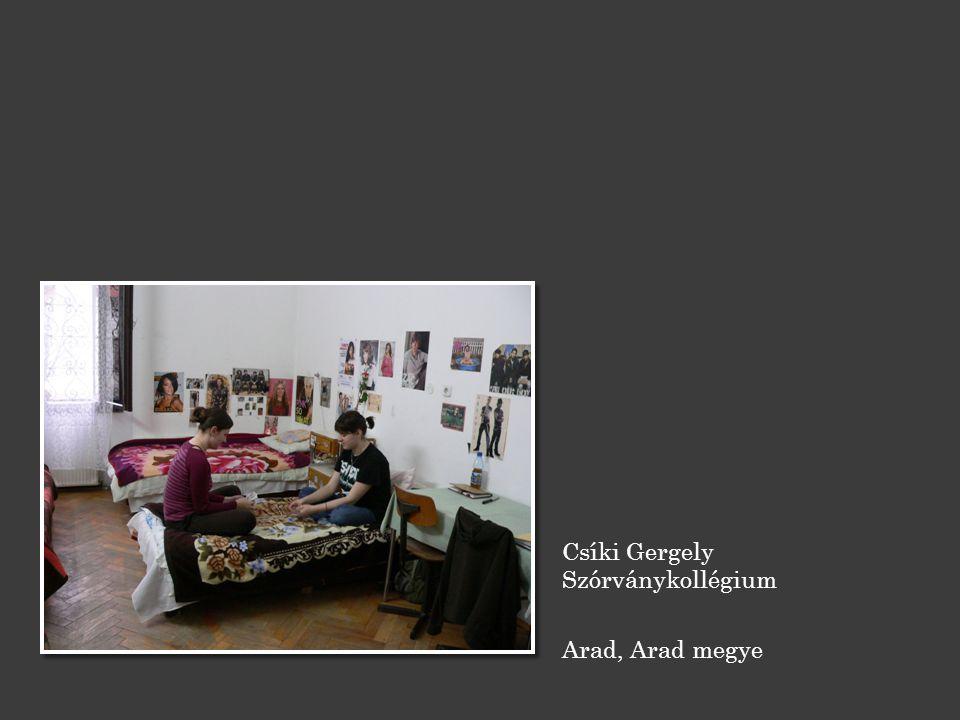 Csíki Gergely Szórványkollégium Arad, Arad megye